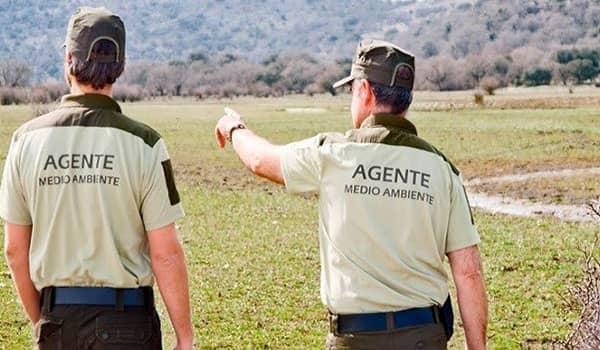 Requisitos para ser agente forestal en España (1)