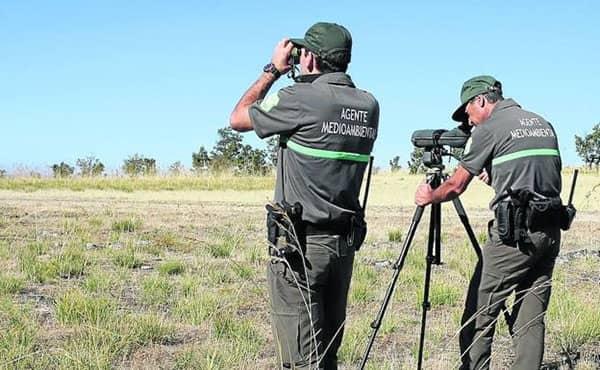 Requisitos para ser agente forestal en España 2 (1)