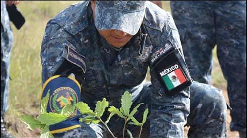 Requisitos para entrar a la gendarmería en México 2 (1)